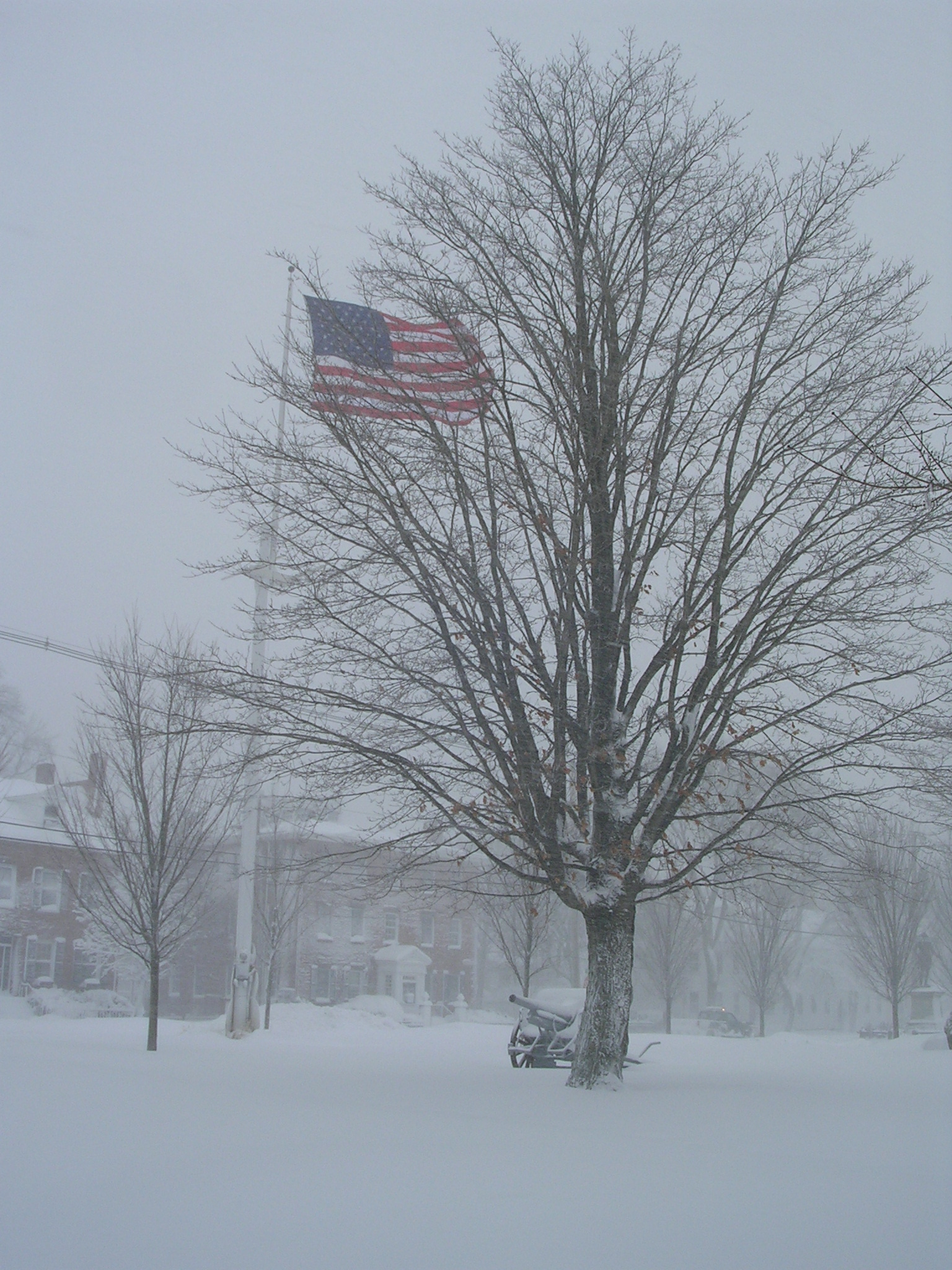 Valley Forge? No, just the flag and monument on Bartlett Mall