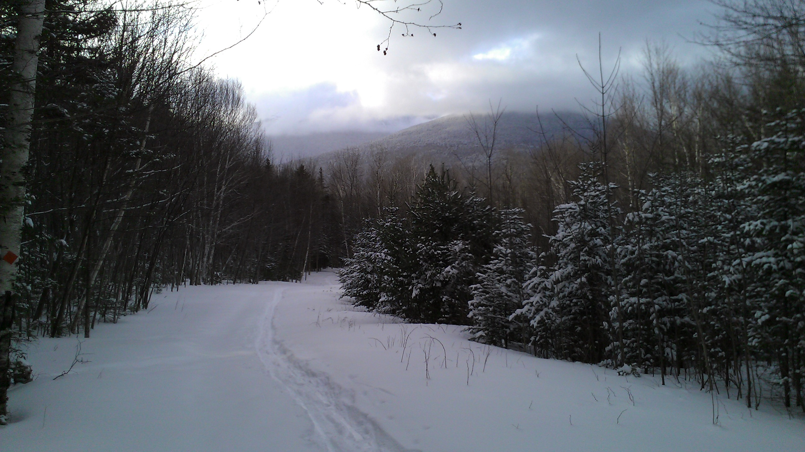 Snowshoeing at Great Glen