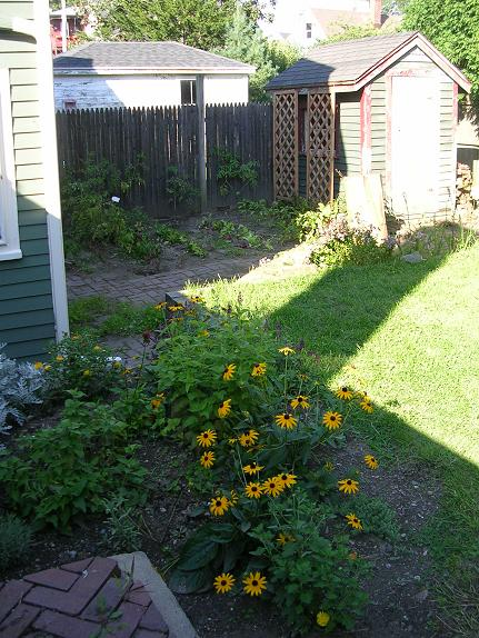 Perennial bed and garden last August